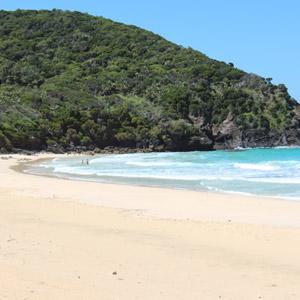 Beaches around Lord Howe Island